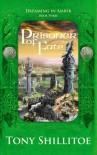 Prisoner of Fate (Dreaming in Amber, #3) - Tony Shillitoe