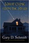 What Came from the Stars -