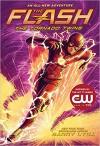 The Flash: The Tornado Twins - Barry Lyga