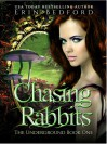 Chasing Rabbits - Erin R. Bedford
