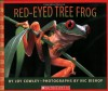 Red-eyed Tree Frog (Scholastic Bookshelf) - Joy Cowley
