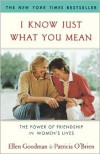 I Know Just What You Mean: The Power of Friendship in Women's Lives - Ellen Goodman,  Patricia O'Brien