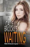 Waiting: A PAVAD: FBI Prequel (PAVAD: FBI Romantic Suspense Book 1) - Calle J. Brookes