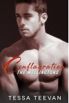 Conflagration (The Wellingtons Book 2) - Tessa Teevan