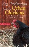 Egg Production with Urban Chickens: How to Raise Chickens in Your Backyard - Amber Richards
