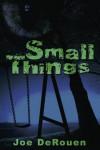 Small Things - Joe DeRouen