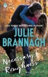 Necessary Roughness - Julie Brannagh