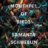 Mouthful of Birds - Samanta Schweblin