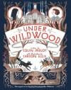 Under Wildwood - Carson Ellis, Colin Meloy