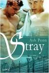 Stray - Ash Penn