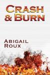Crash & Burn (Cut & Run Book 9) - Abigail Roux