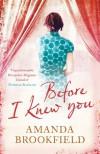 Before I Knew You - Amanda Brookfield