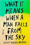 What It Means When a Man Falls from the Sky: Stories - Lesley Nneka Arimah