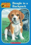 Beagle in a Backpack - Ben M. Baglio