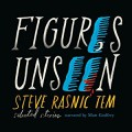 Figures Unseen: Selected Stories - Steve Rasnic Tem,Matt Godfrey