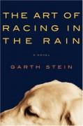 The Art of Racing in the Rain - Garth Stein