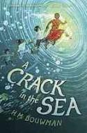 A Crack in the Sea - H.M. Bouwman