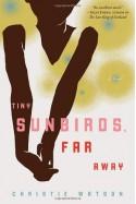 Tiny Sunbirds, Far Away - Christie Watson