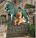 Chicago Unleashed - Larry Broutman