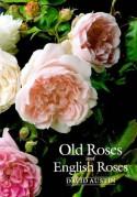 Old Roses and English Roses - David Austin
