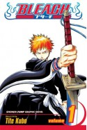 Bleach Volume 01: The Death and The Strawberry - Tite Kubo