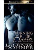 Burning up Flint - Laurann Dohner