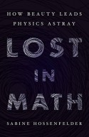 Lost in Math: How Beauty Leads Physics Astray - Sabine Hossenfelder