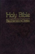 Holy Bible: New International Version - Anonymous