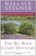 The Big Rock Candy Mountain (Contemporary American Fiction) - Wallace Stegner