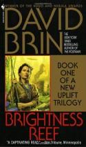 Brightness Reef - David Brin
