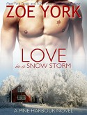 Love in a Snow Storm: The Soldier and His Best Friend's Little Sister (Pine Harbour Book 2) - Zoe York