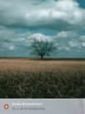 To a God Unknown - John Steinbeck, Robert DeMott