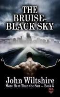 The Bruise-Black Sky - John Wiltshire