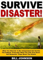 Survive Disaster!: What You Must Do To Be Independent And Survive The Collapse Of Society When The Grid Goes Down And Desperate Thugs Roam The Streets - Bob Johnson