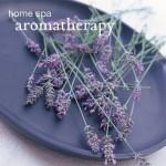 Home Spa Aromatherapy - Glenda Taylor, Ryland Peters & Small