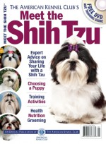 Meet the Shih Tzu - American Kennel Club, American Kennel Club