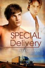 Special Delivery - Heidi Cullinan