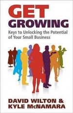 Get Growing: Keys To Unlocking The Potential Of Your Small Business - David Wilton, Kyle McNamara
