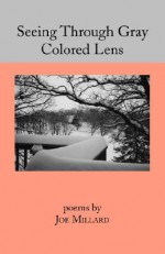 Seeing Through Gray Colored Lens - Joe Millard