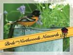 Birds of the Northwoods Notecards - Stan Tekiela