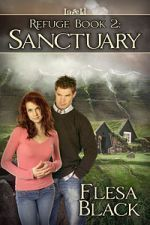 Sanctuary - Flesa Black