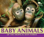 Baby Animals of the Tropical Rain Forest - Carmen Bredeson
