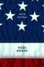 Wide Awake - David Levithan