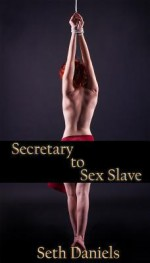 Secretary to Sex Slave: A Bdsm Fantasy - Seth Daniels