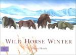 Wild Horse Winter - Tetsuya Honda