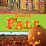 Fall - Judy Wearing