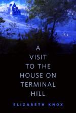 A Visit to the House on Terminal Hill: A Tor.Com Original - Elizabeth Knox