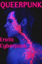 Queerpunk: Erotic Cyberpunk - Kalv Cobalt, Kannan Feng, Sunny Moraine, R.E. Bond, Eric Del Carlo, Cecilia Tan, Kelly Kinkaid