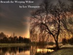 Beneath the Weeping Willow - Lee Thompson