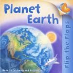 Flip The Flaps: Planet Earth - Mike Goldsmith, Nicki Palin